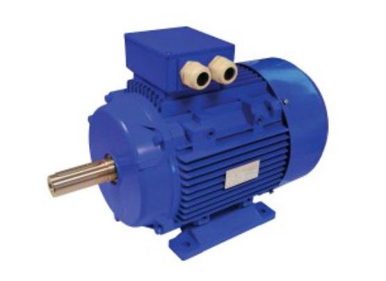 challenge motors and mounts